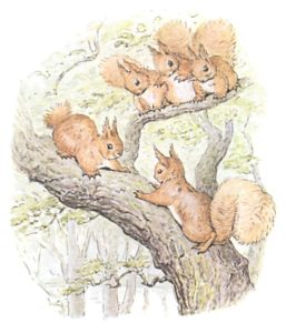 27-color-drawing-of-five-squirrels-playing-on-tree-branch-public-domain